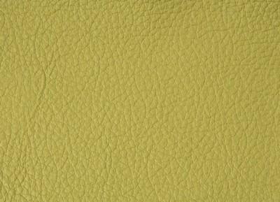 214 pistachio